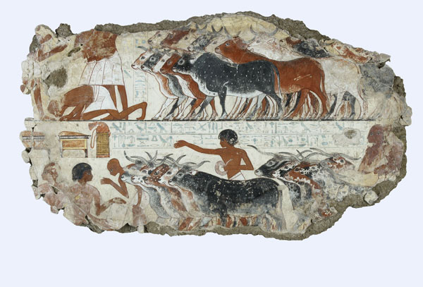Scribe taking a census of cattle. Thebes, c. 1400 B.C. British Museum